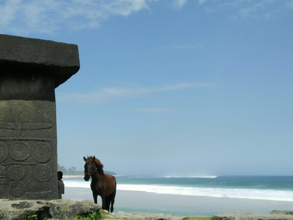 Sumba horse and tomb.JPG