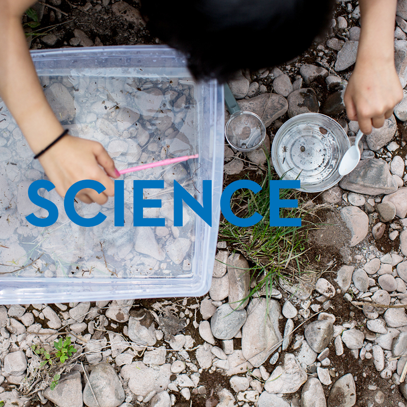 Streamwatch makes science real - for fourth graders in the Catskills and checks stream health to boot.As a program of the Catskill Center, we're working for the future.Learn more.