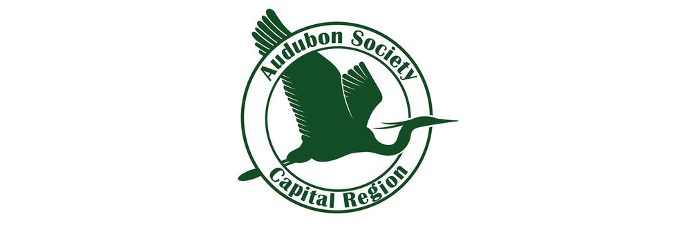 Capital region audubon -