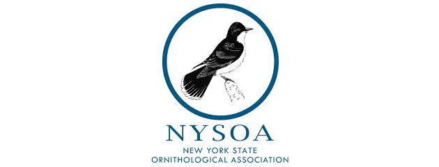 New York State Ornithological Association -
