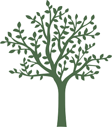 P278---Bowmore---Tree-Only-[transparent-back]- small.png