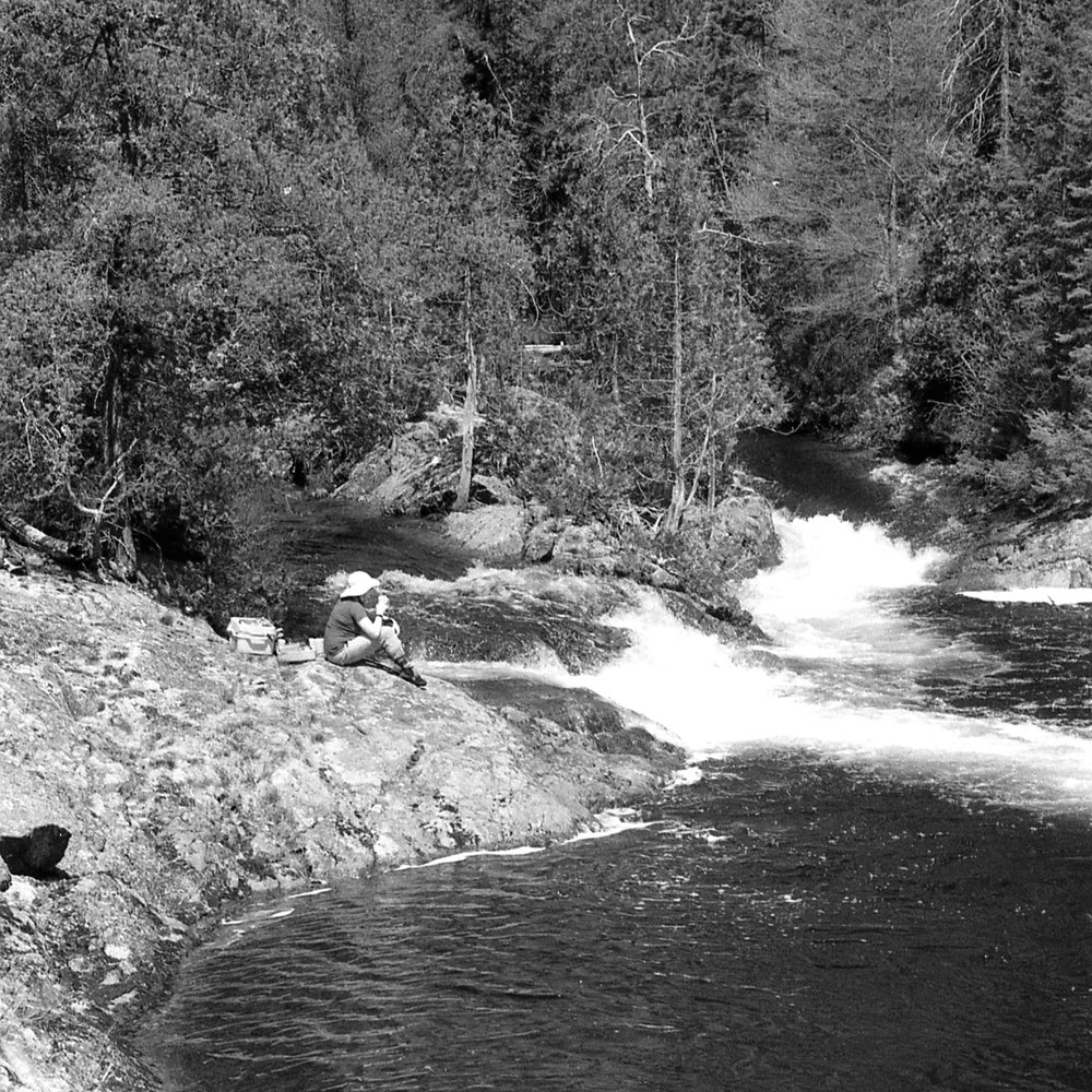 Talking Falls as photographed on black & white film by the author.