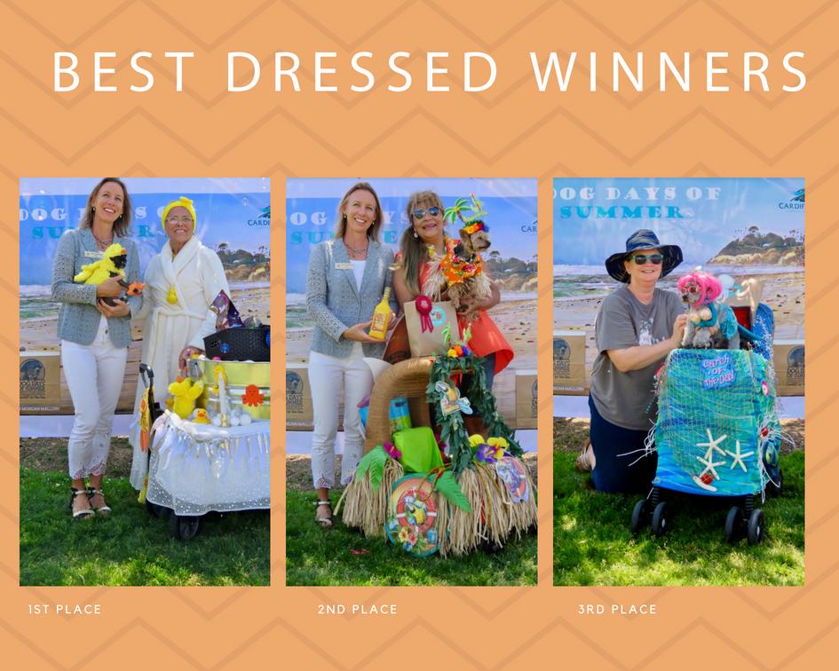 dog days of summer contest.jpg