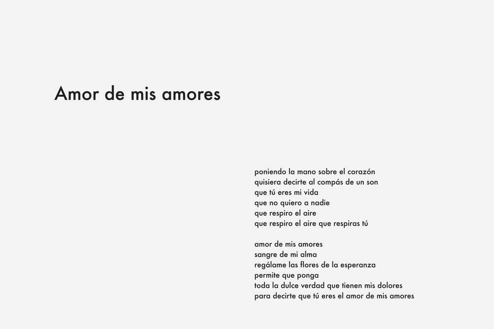 Amor-de-mis-amores.jpg