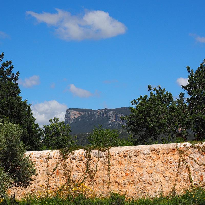 Cecilia-García-Amaro-Mallorca-3.jpg