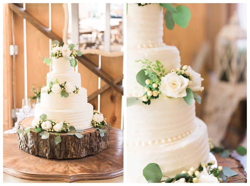 cake deep south farm ellijay north georgia atlanta wedding photographer