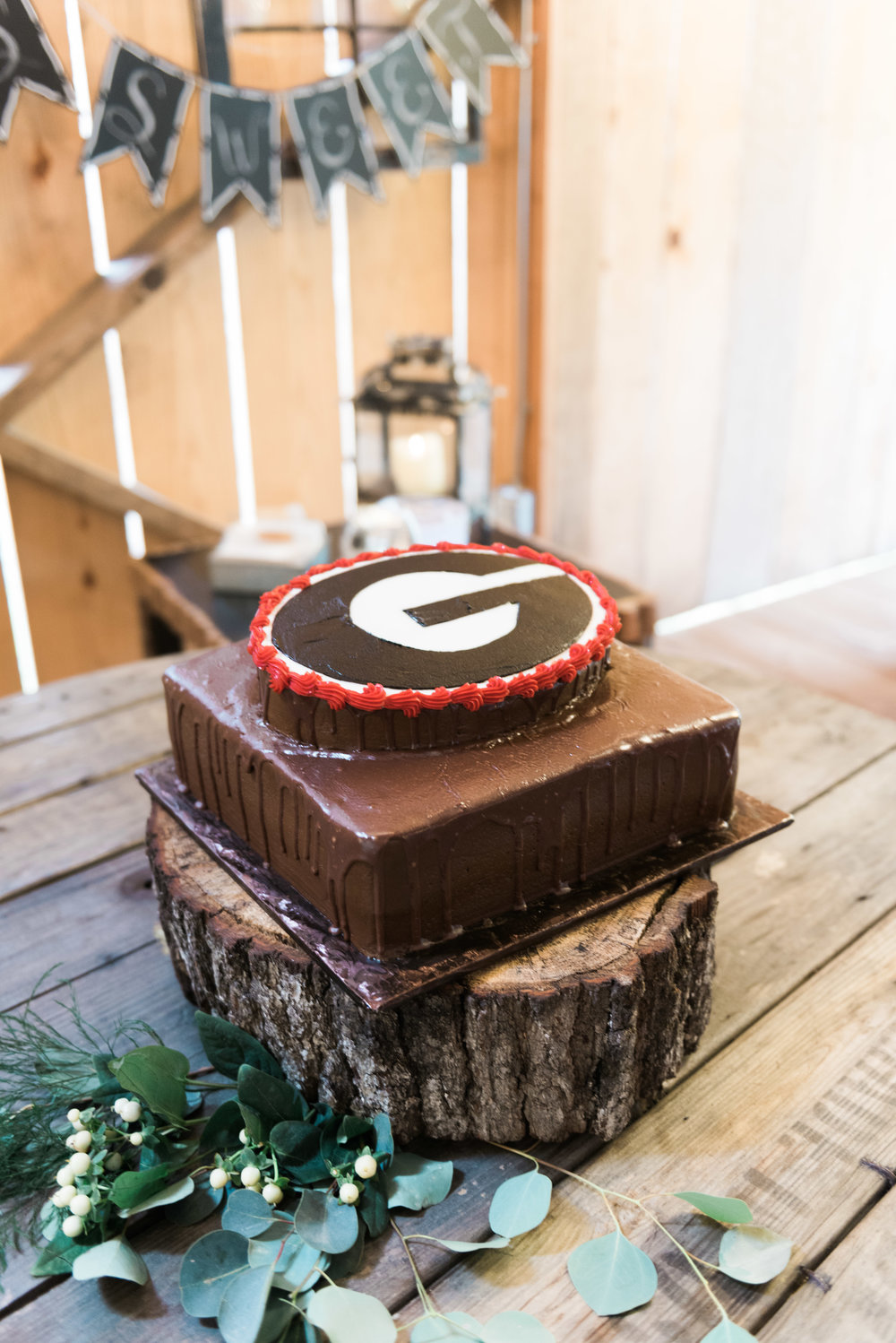 uga groom cake deep south farm ellijay north georgia atlanta wedding photographer