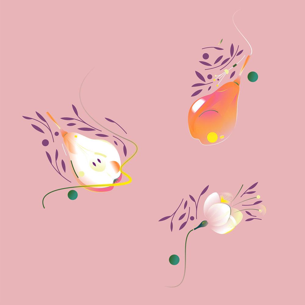 Pears 1.jpg