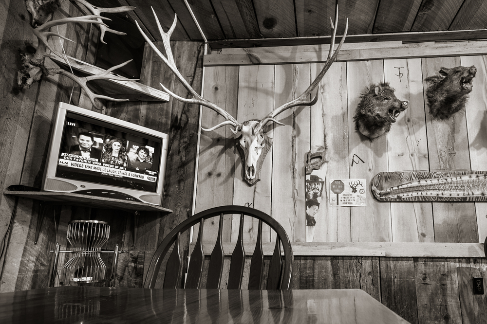 Stuffed Heads, Road Kill Cafe  Old Route 66, Seligman, AZ 2011