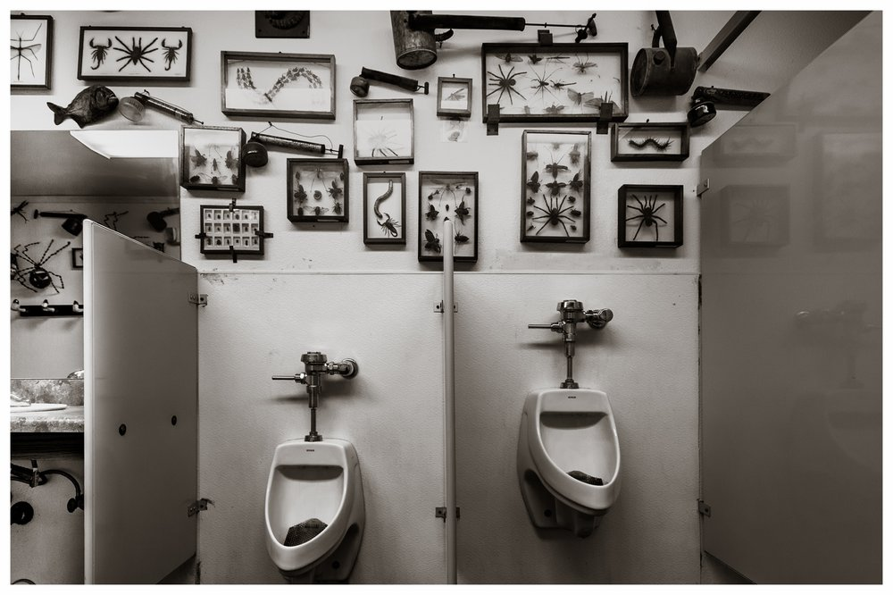Men's Room Holbrook, AZ 2016