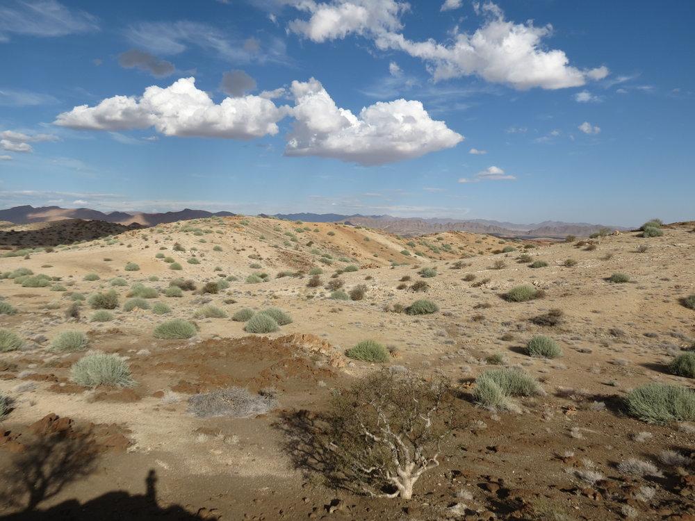 Namibfontein Farm