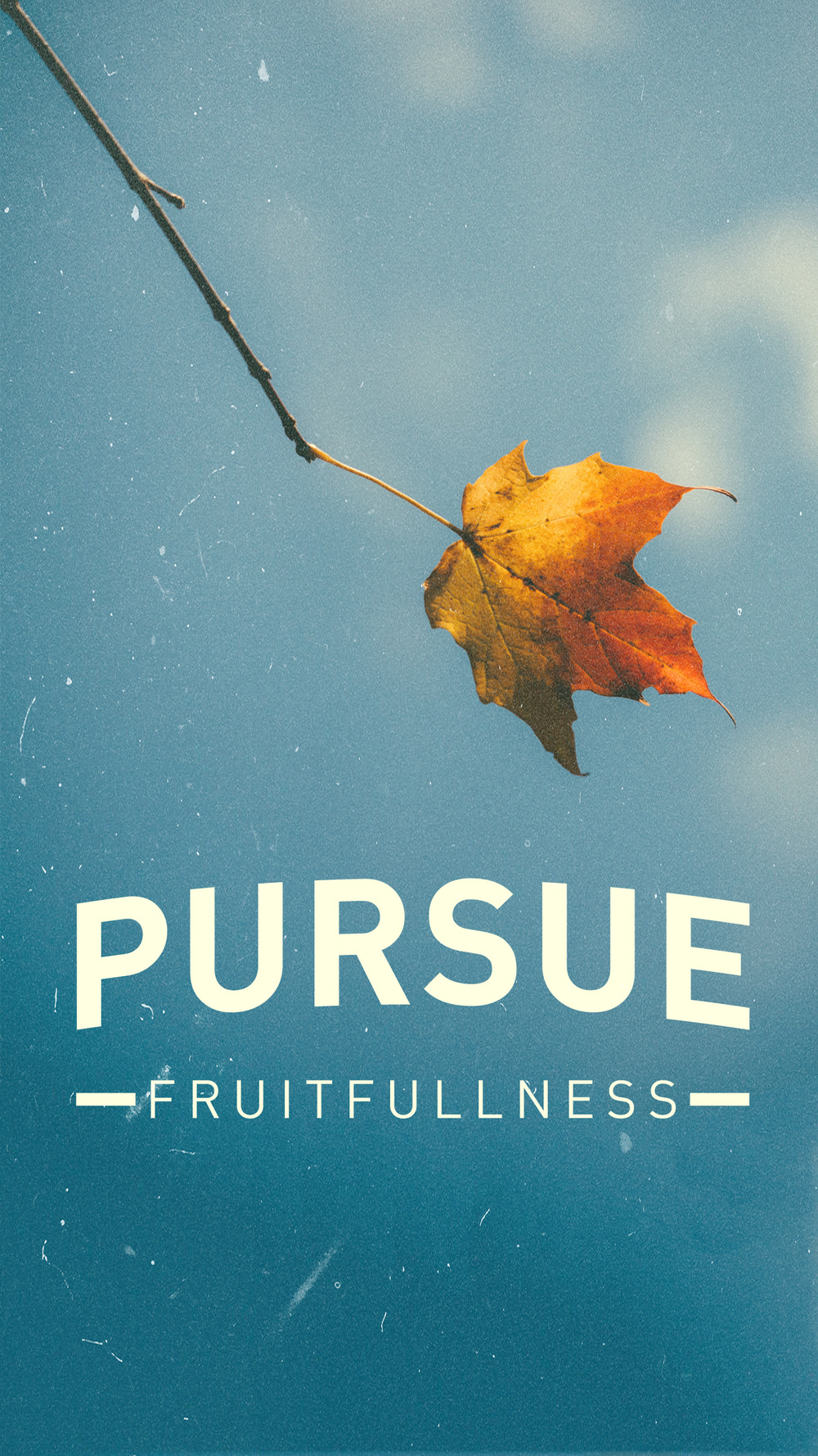 Download this graphic as a lock screen for your mobile device as a reminder to be fruitful.