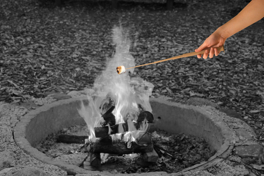 roasting+stick+blakwhite.jpg