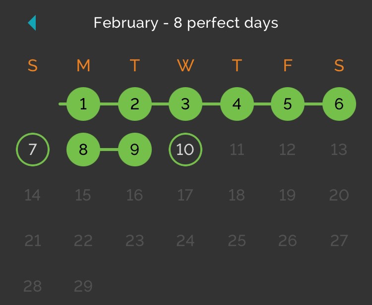 A screenshot of my February, via Productive.
