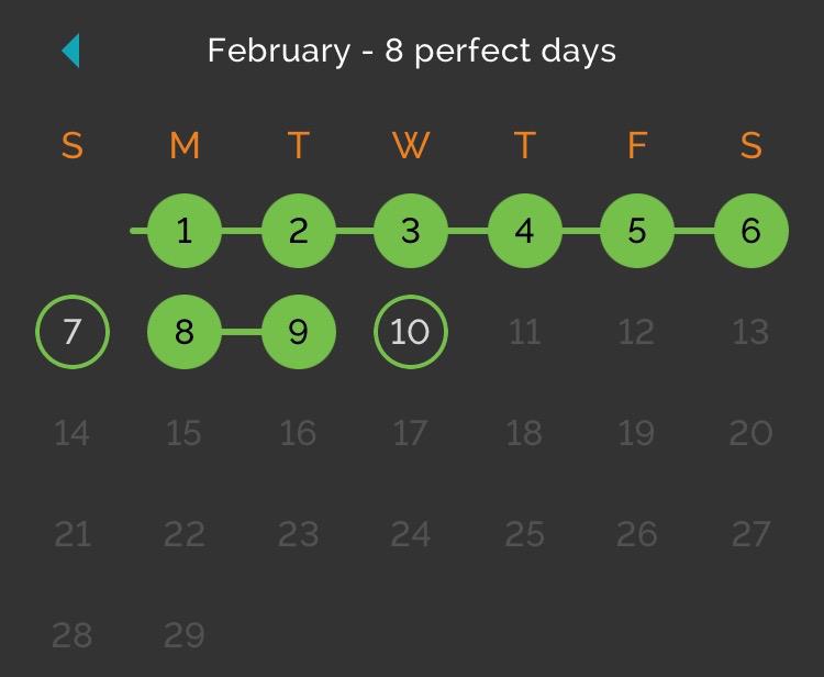 A screenshot of my February, via Productive.