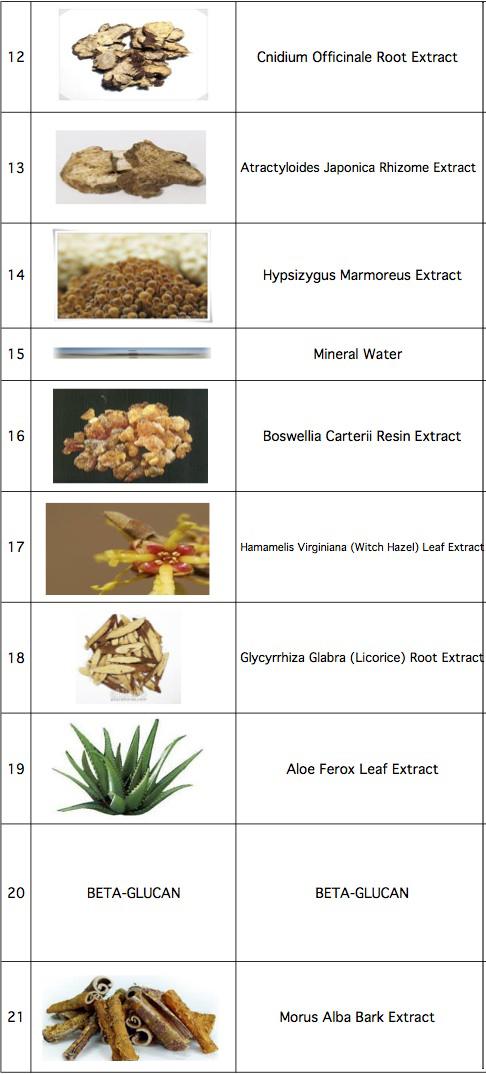 Worksheet in Bloom Ingredients-3 copy.jpg