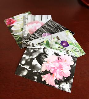 flower postcards