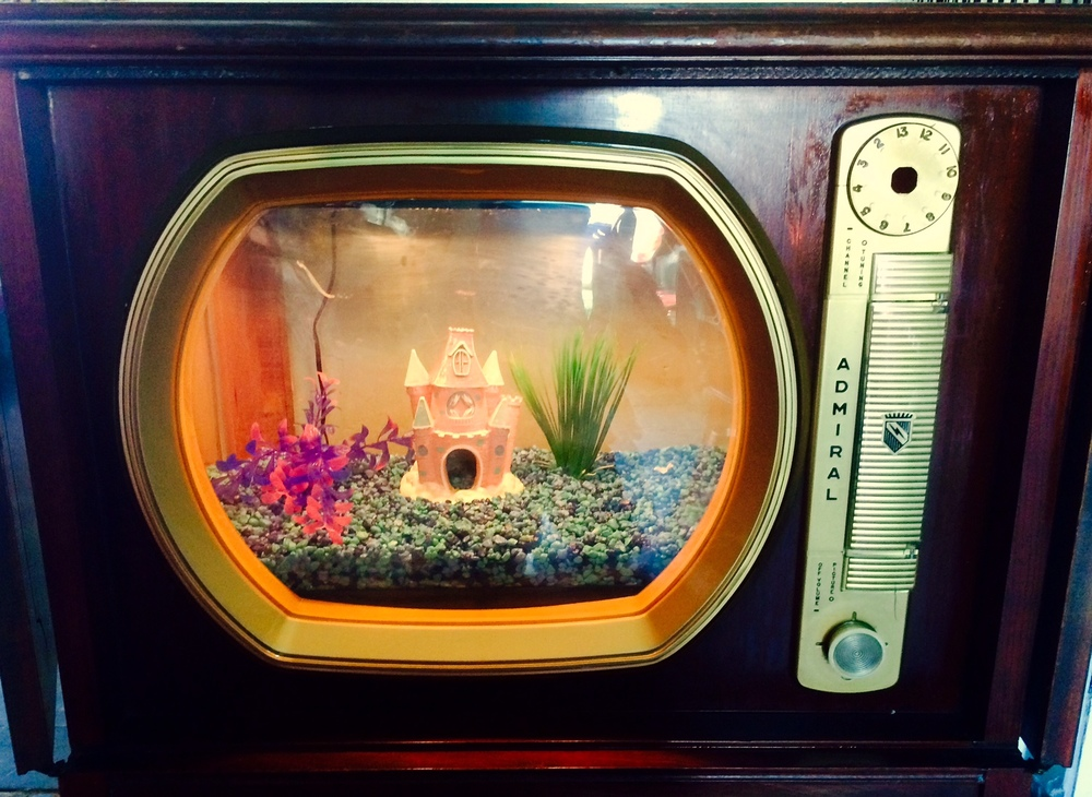 Brenden Shanks - Retro TV Fish Tank