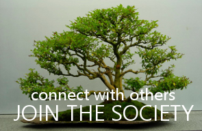 Connect with Others - Join the Society