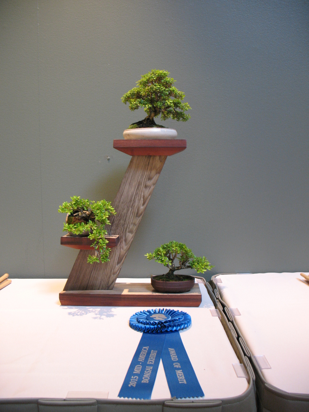 2015 Mid-America Exhibit - Open - Boxwood