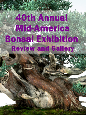40th Annual Mid-America Bonsai Exhibition - Review