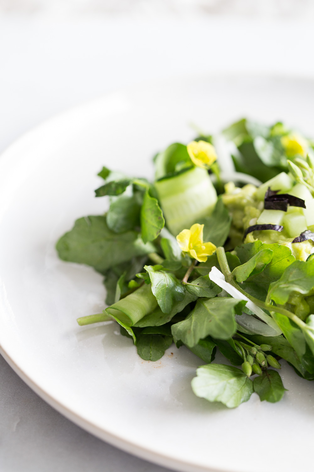 watercress, avocado, cucumber-32.jpg