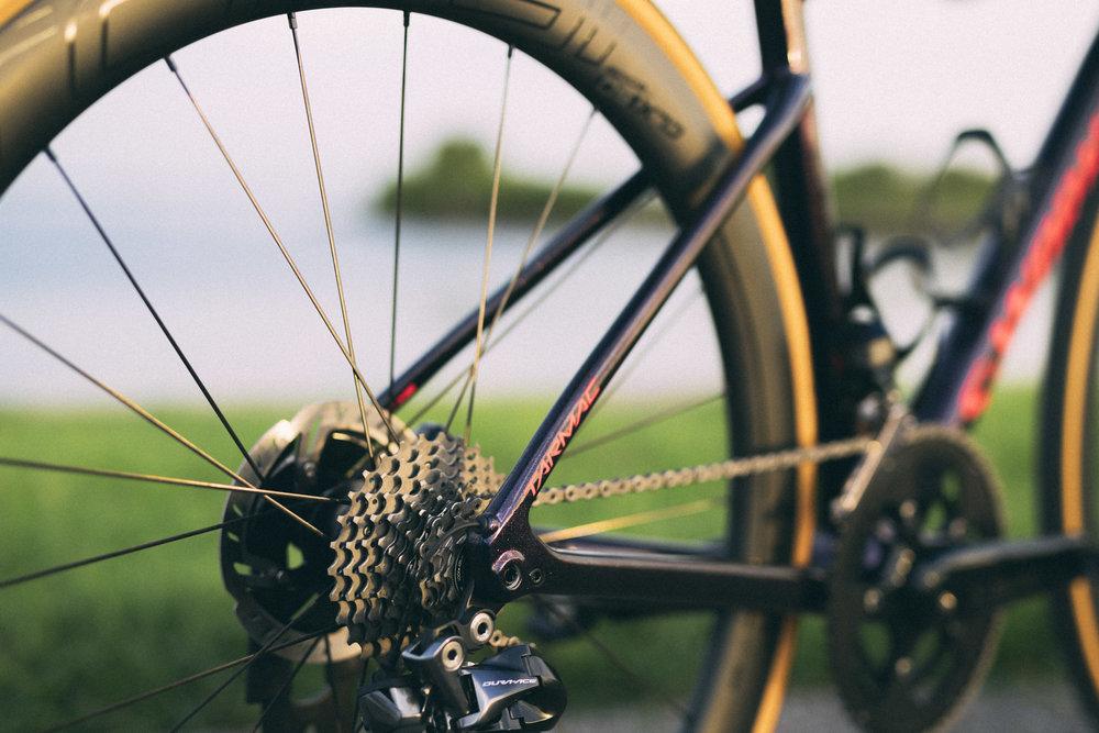 Biking_27.jpg