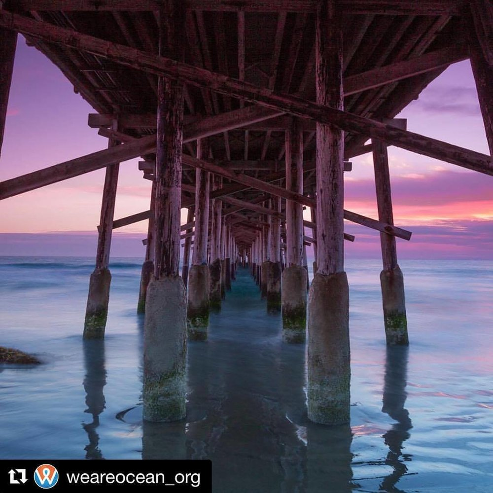 #Repost  @weareocean_org  💜 this shot! We had such a great time @wildgoosetavern last SUNDAY🌞 to be apart of the fundraiser for @weareocean_org and support them in their fight back against cancer!  🏡❣️#homesbydkcowles  #dkfindshome