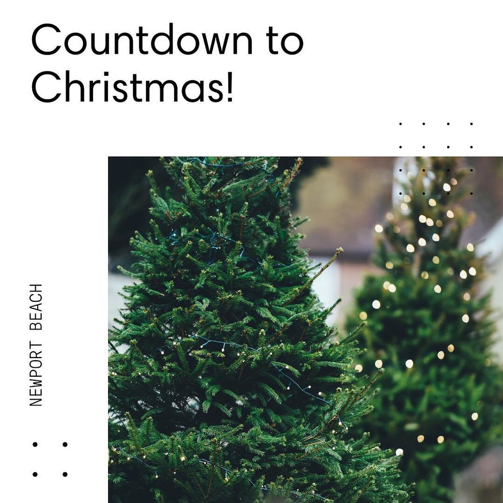 It's only 20 days away! Where do you get your Christmas Tree in Newport Beach?🎄 #HomesbyDkCowles  #dkfindshomes