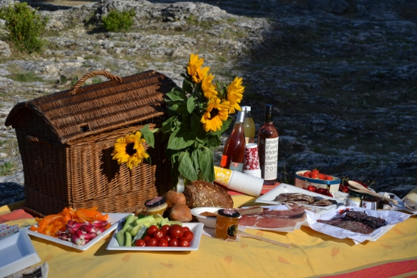 Picnic at Pont du Gard