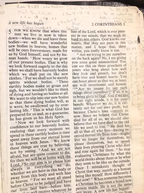 Cynthia's Bible