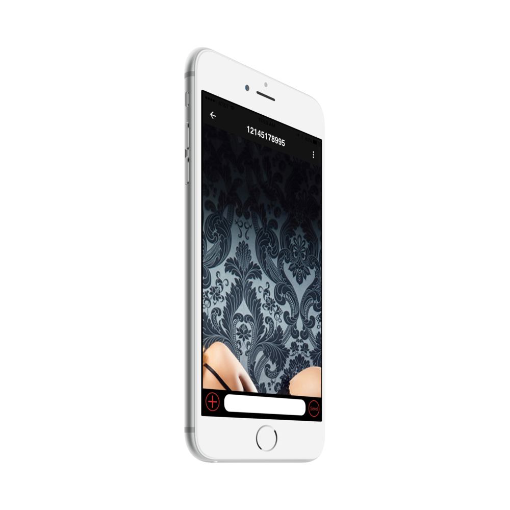 image_iphone6plus_silver_side1 (3).png