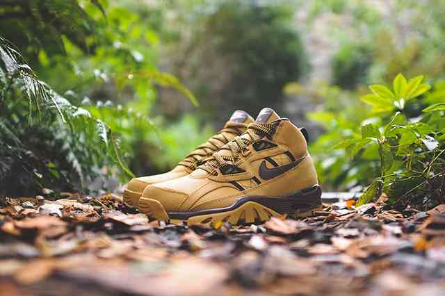 NIKE AIR TRAINER SC wheat