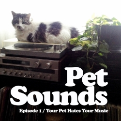 E01 Image - Your Pet Hates Your Music