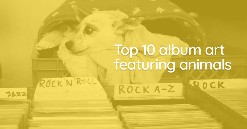 TOP PET ALBUM ART > Check out music releases featuring animals on the cover -