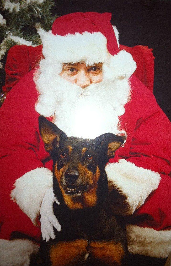Santa photo (2010)