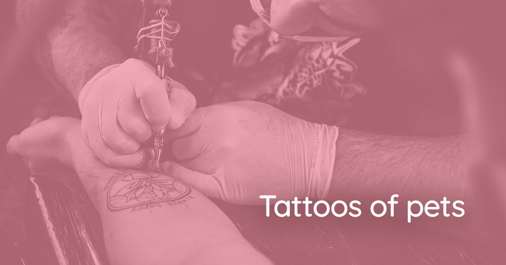 SEE THE INK > Check out the pet tattoos from the episode -