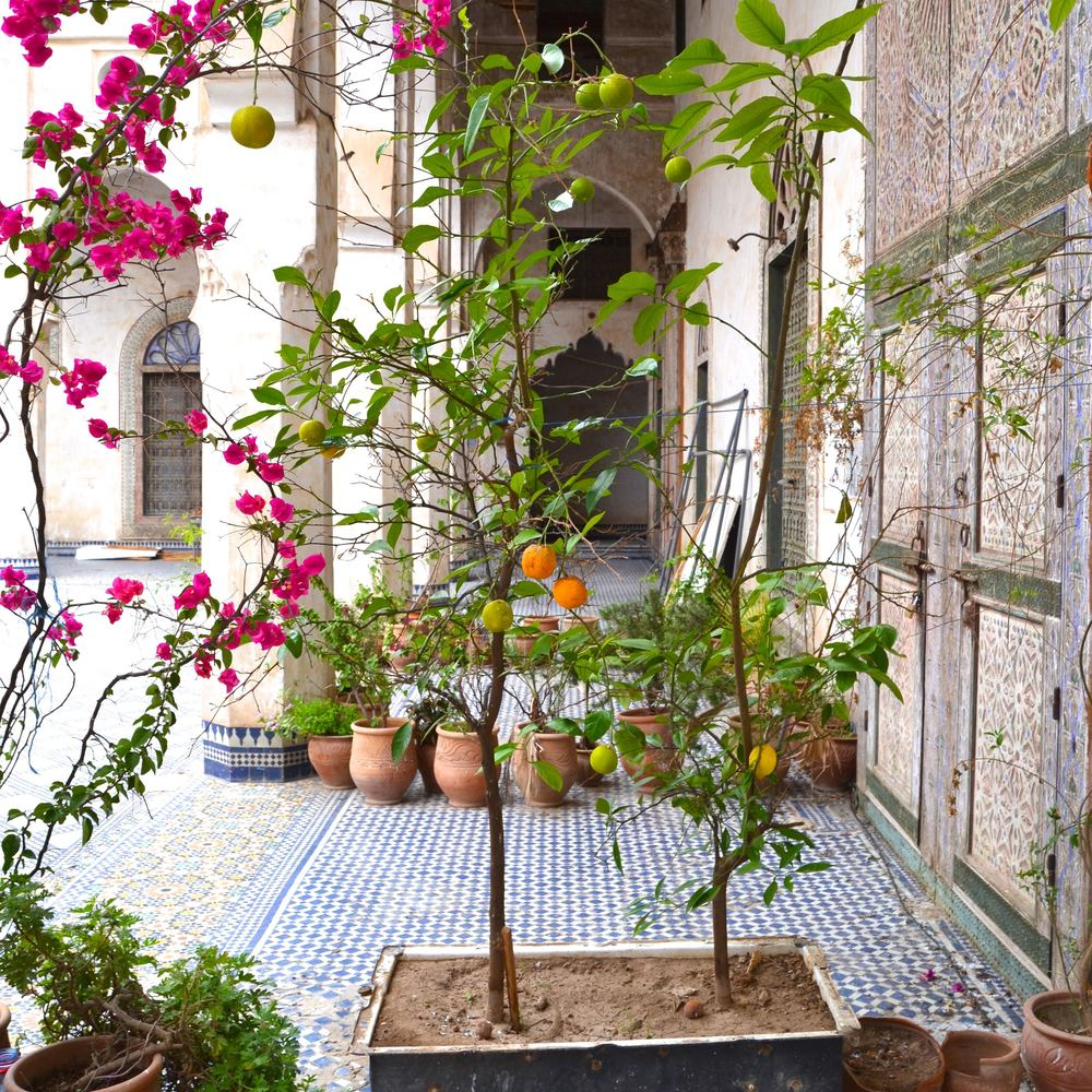 The Glaoui Palace Indoor Garden