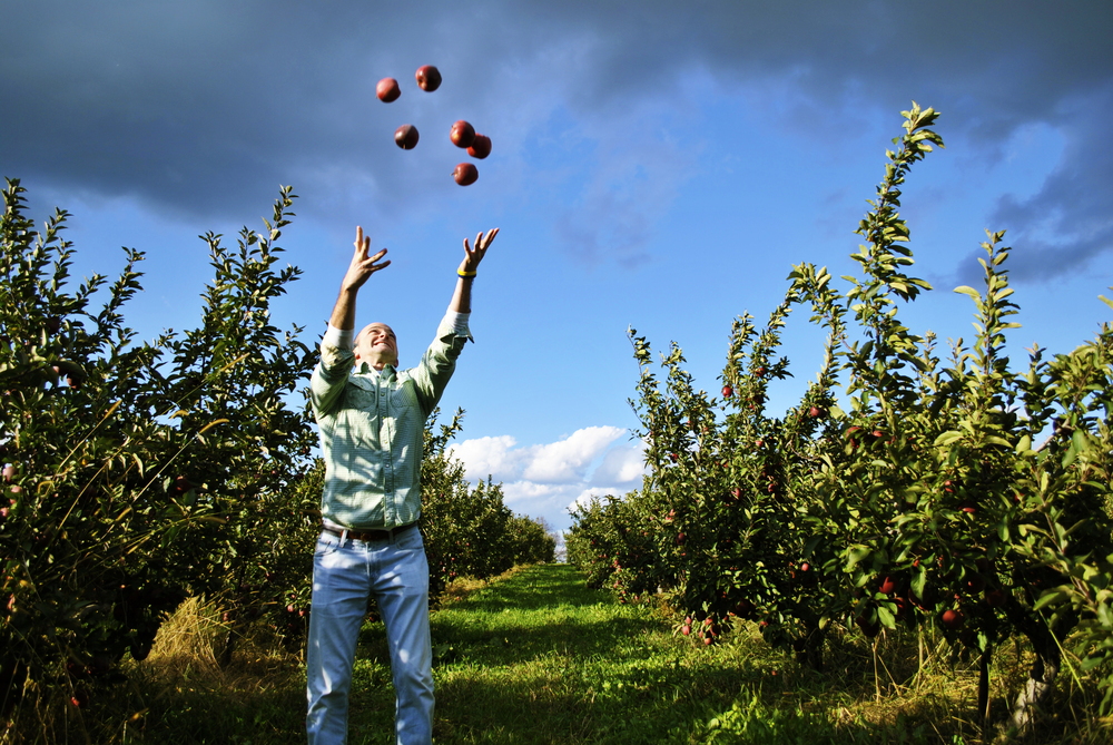 Apple season in the Hudson Valley