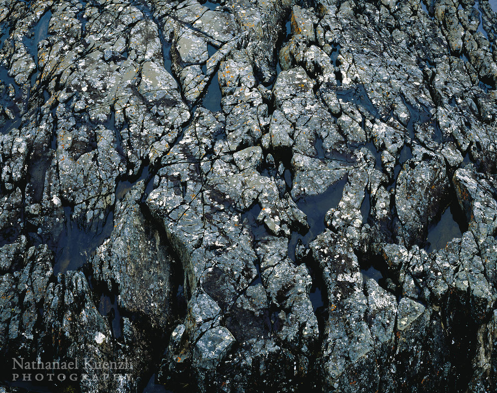 Rock Detail, Pukaskwa National Park, Ontario, Canada, June 2005