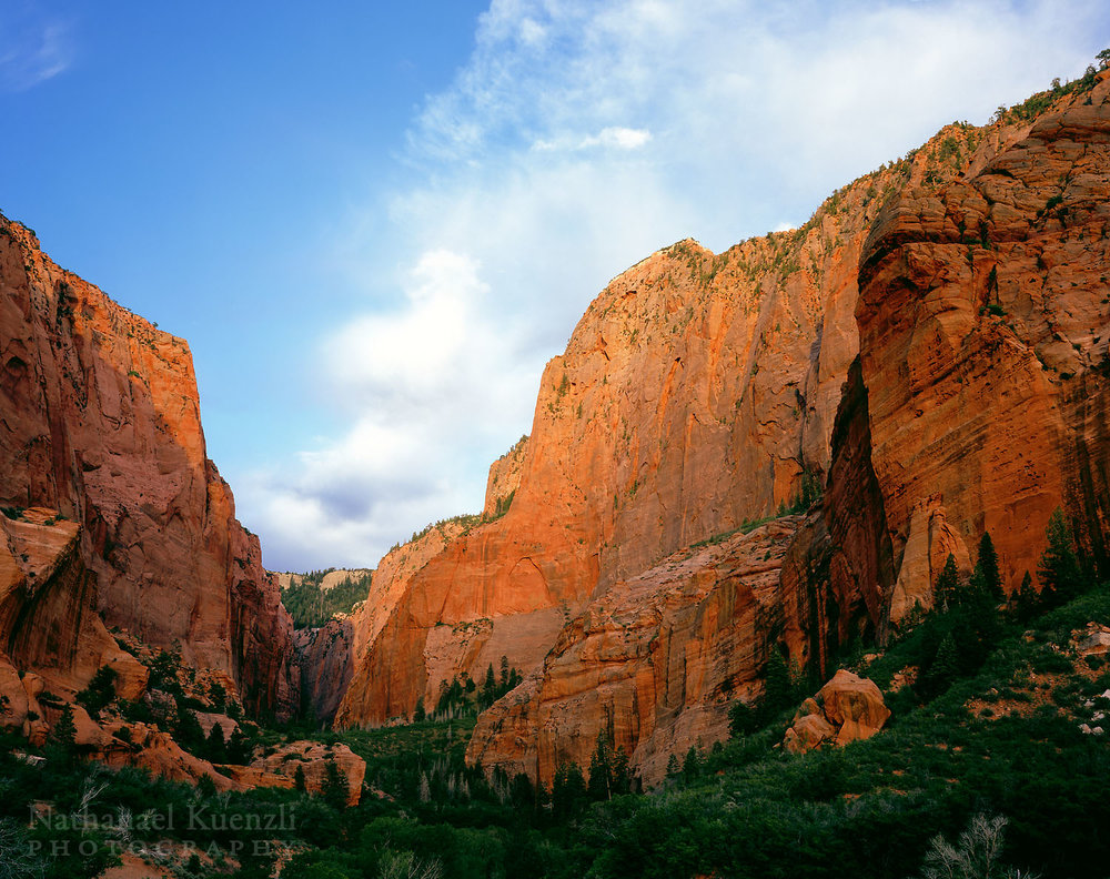 South Fork, Kolob Canyons, Zion National Park, Utah, May 2007