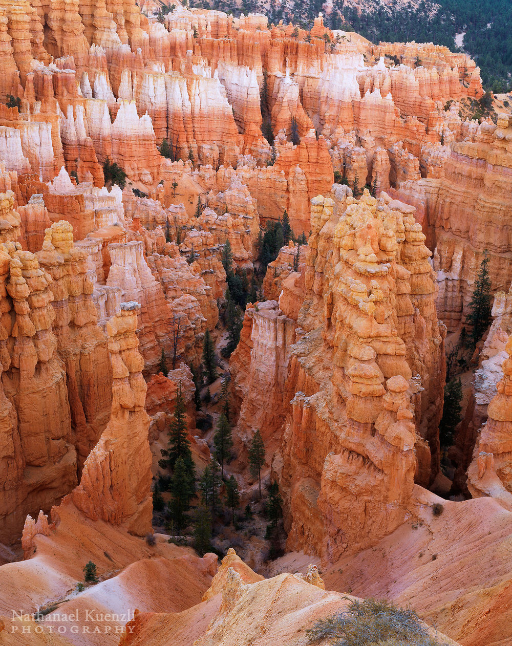 Bryce Canyon National Park, Utah, October 2003