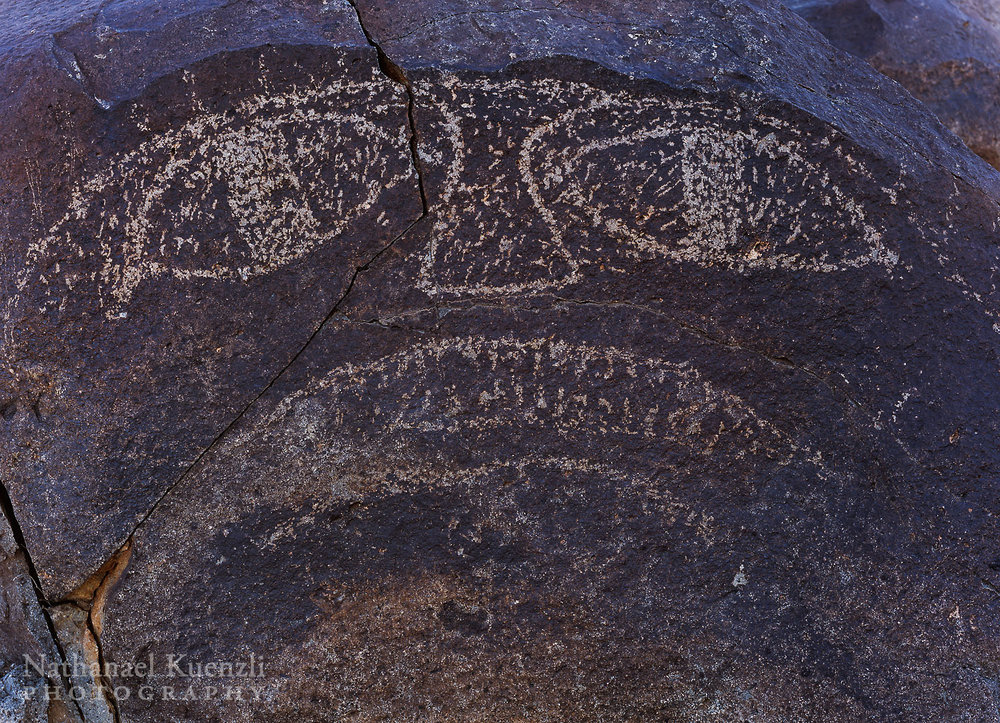Petroglyph, Three Rivers, New Mexico, March 2008