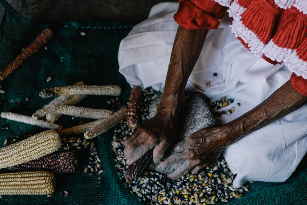 Angela's mother grains corn to prepare Nixtamal: corn softened in water and calcium oxide, which is the raw ingredient of tortillas.