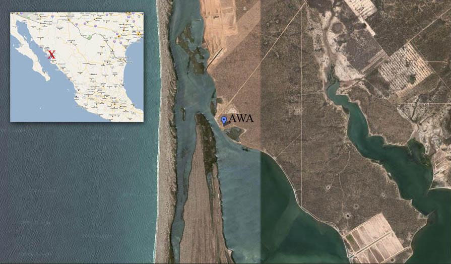 ariel map.jpg