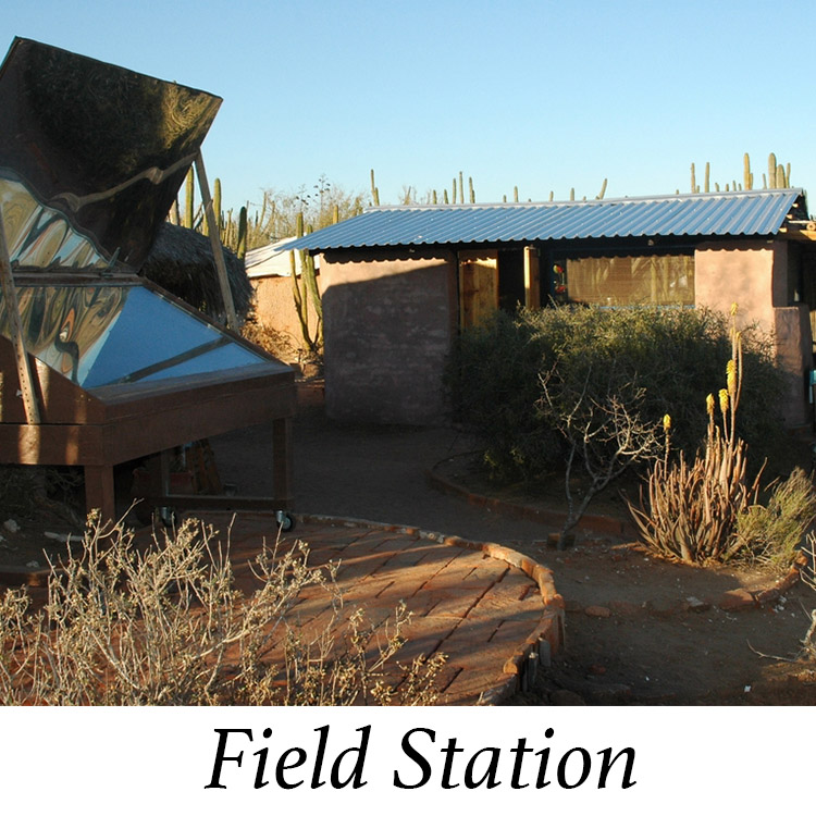 Field Station Gallery.jpg
