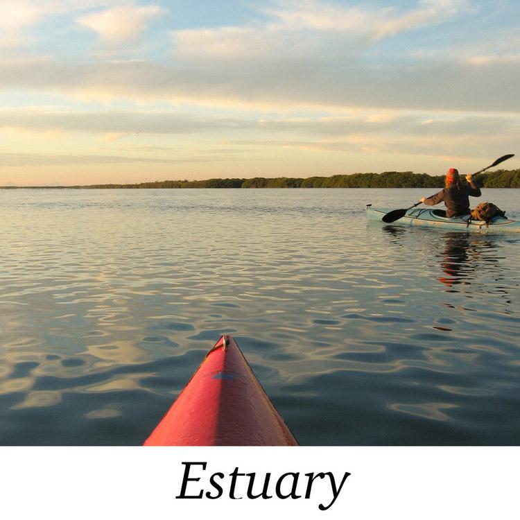 The+Estuary-1.jpg