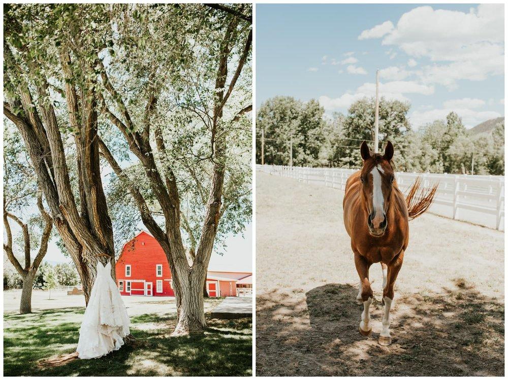 CatlynJustin-RedBarnGuestRanch-Wedding_0002.jpg