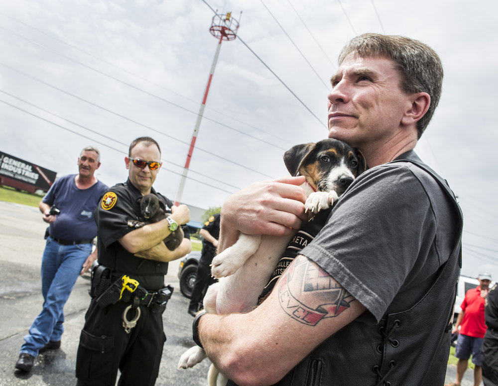 John Schivik of the Mon Valley Harley Owners Group greets a puppy after a long ride from Tennessee at the Rostraver Airport on Saturday, July 30, 2016. The dogs were being taken back to Hot Metal Harley-Davidson for a fundraiser and were being put up for adoption immediately.