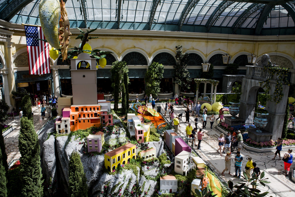 The opening of the new Italian-inspired display in the Bellagio's conesrvatory on Monday, June 12, 2017.  Patrick Connolly Las Vegas Review-Journal @PConnPie